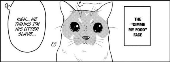 Tonikaku Cawaii chapter 53