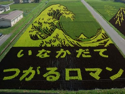 Japanese Rice Fields Made Into Art -- Whoa!